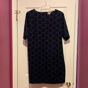 Blue with black polka dot short sleeve shift dress